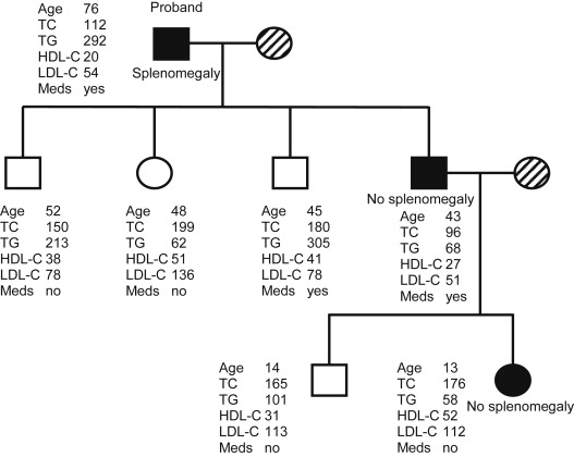 Inherited lipemic splenomegaly and the spectrum of ...